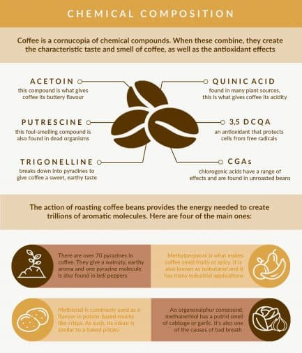 Infographic showing the chemistry of coffee